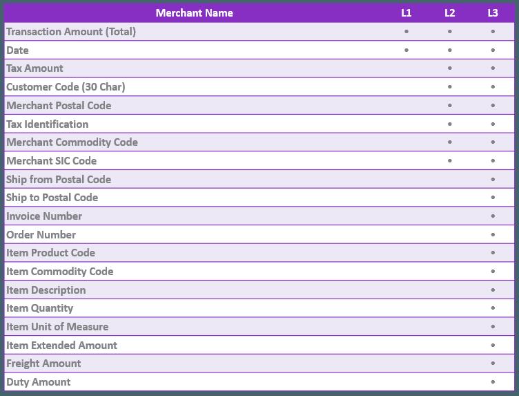 Level 1 versus Level 2 versus Level 3 Credit Card Processing data fields